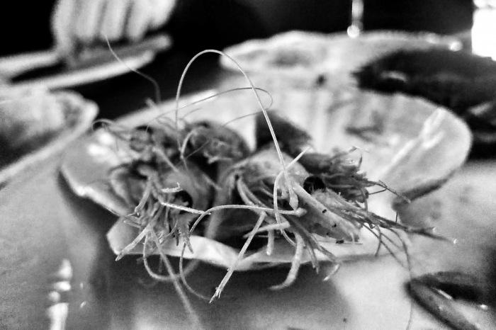 nora gray mtl food snob  4